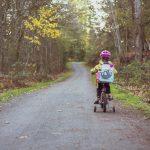 The Parent Should Do For The Child's Success