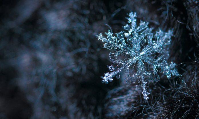 5 Pieces To Get You Through Winter
