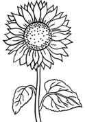 Plants and Animals Coloring Pages