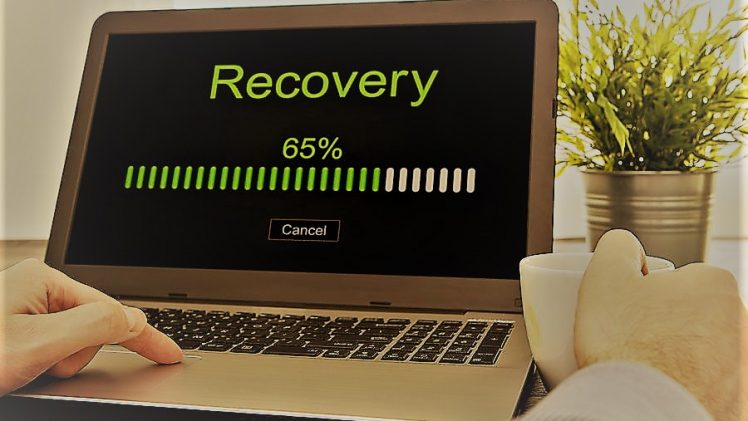 How to Securely Recover Data with the Help Of Ease Us Data wizard?