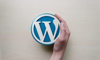 Top 11 Best Practice to Optimize Your WordPress Site